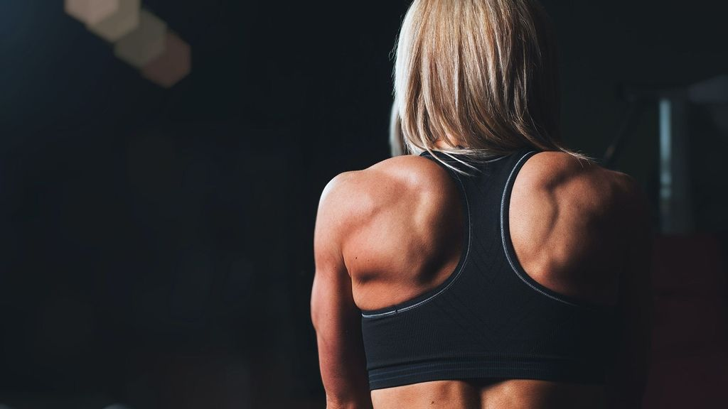 (Representative image) A team of researchers found that dileucine boosts the metabolic processes that drive muscle growth 42 percent more than free leucine does. The findings were published in the Journal of Applied Physiology. (Scott Webb/Unsplash)